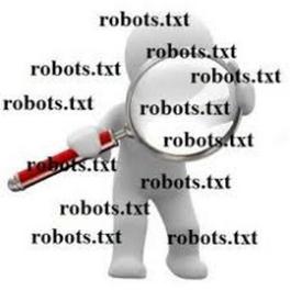 cómo configurar-robots-txt correctamente